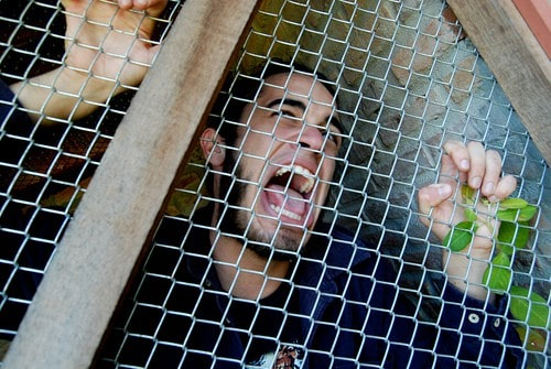 man-in-cage-flickr-f_mafra