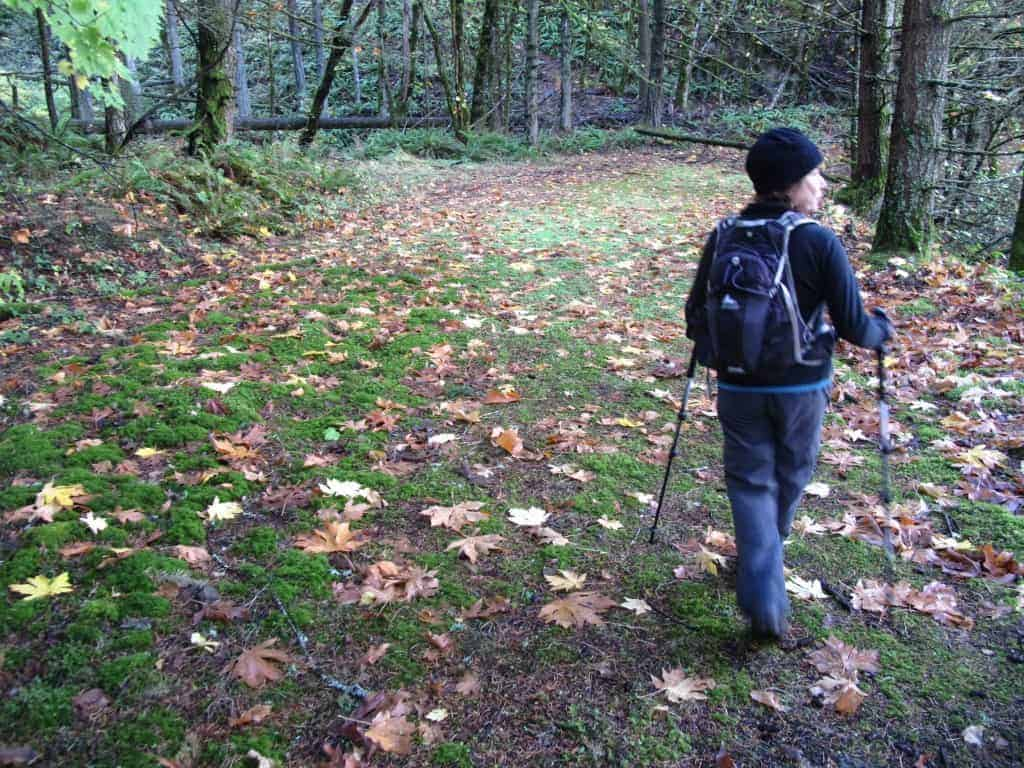 Best fall colors hikes near Portland.