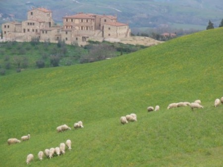 What makes hiking in Tuscany so unique? Find out from Portland author and guide Paul Gerald at http://paulgerald.com
