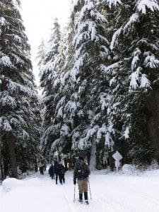 mount-hood-snowshoe