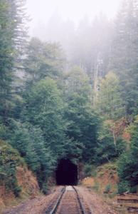salmonberry river railroad hike