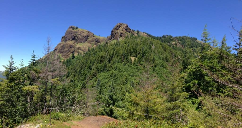 Saddle Mountain is one of the best hikes near Portland, especially when the summer wildflowers are blooming.