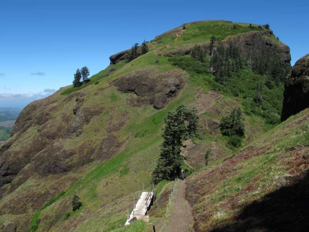 Best Hikes Near Portland It S Flower Time On Saddle