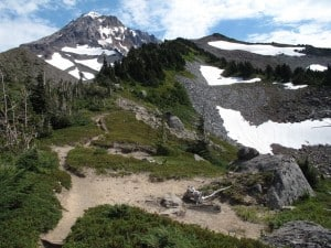 Looking for a Portland hike? McNeil Point is one of the best hikes near Mount Hood and this is the best time to go!