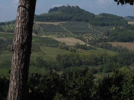 The hills of Tuscany, just as you dreamed of them.