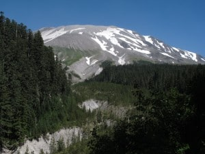 Best Mount Saint Helens Hikes: Sheep Canyon
