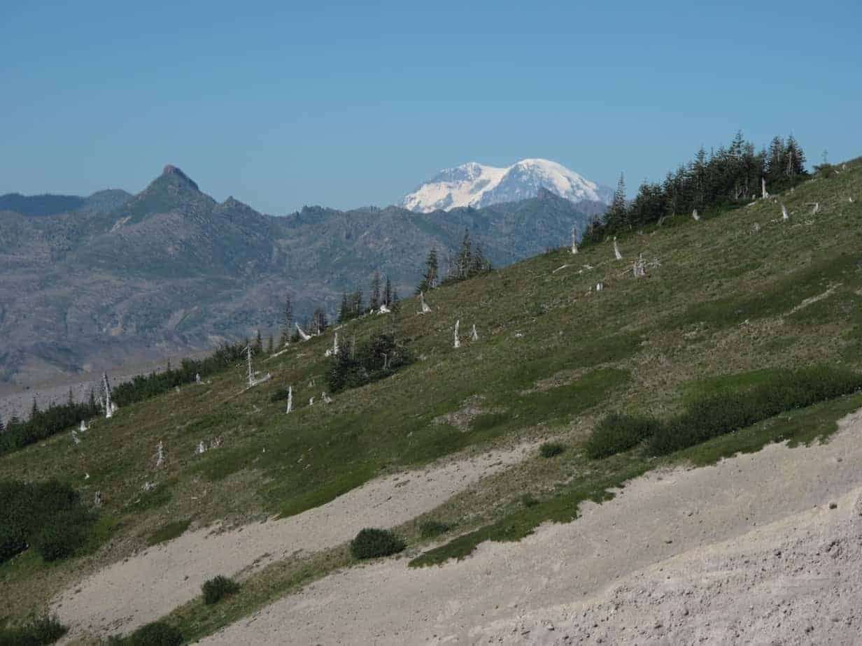 mount-saint-helens-hikes-sheep-canyon-06