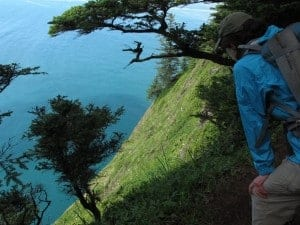 Cape Lookout is a great Oregon Coast hike.