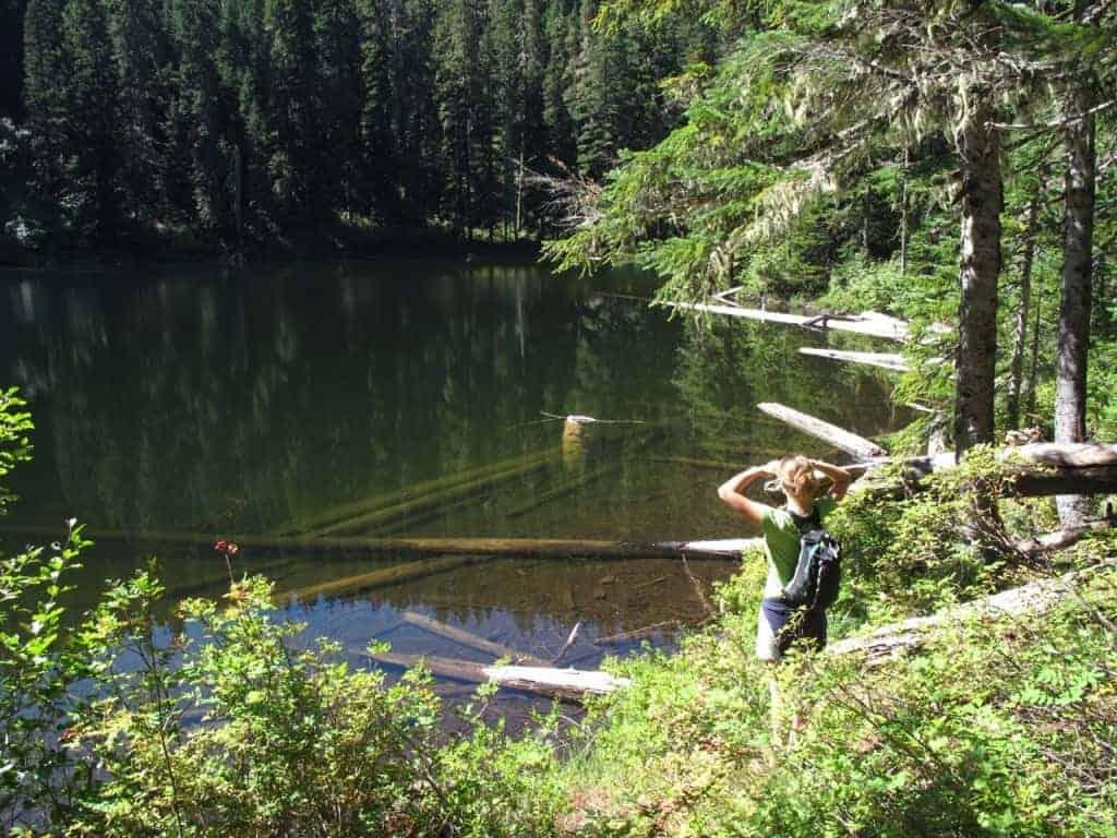 portland-hikes-roaring-river-rock-lakes