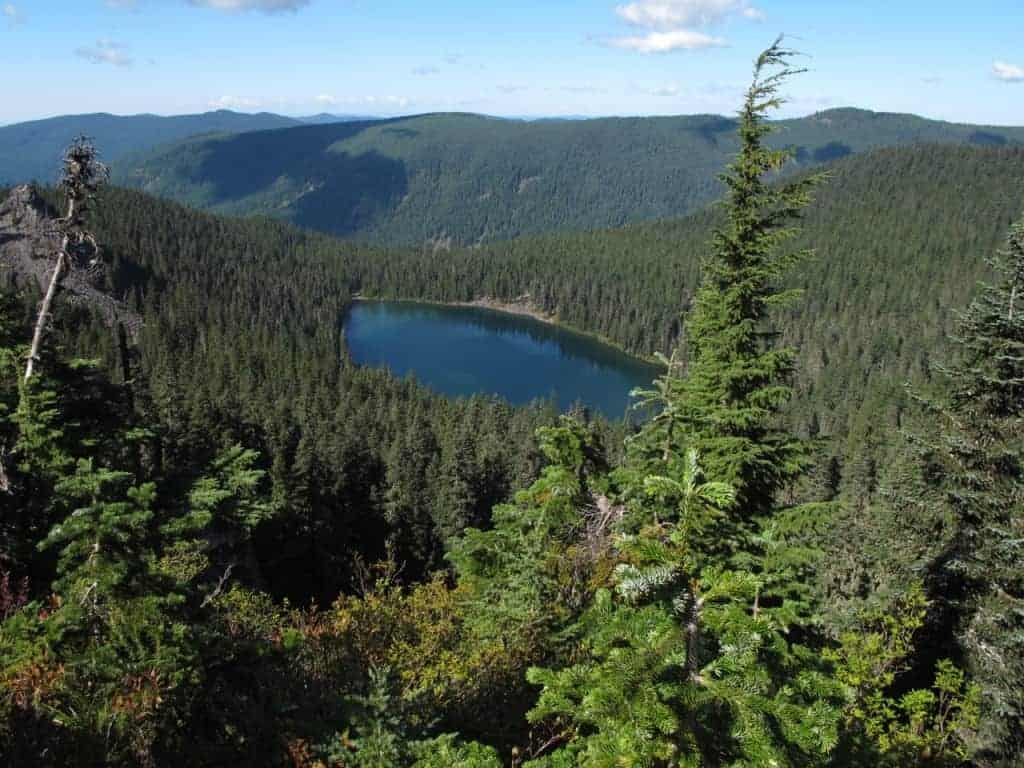 Best hikes near portland roaring river wilderness for Roaring river fishing hours