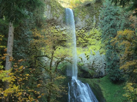Mazamas will get you to Pup Creek Falls this weekend.