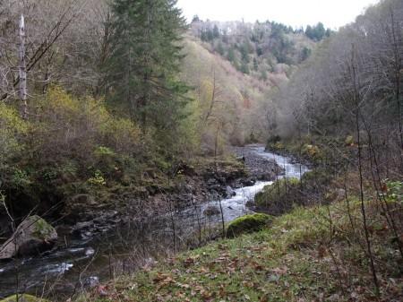 The Salmonberry River is a unique Oregon Coast Range hike.