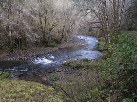 The Salmonberry River is a unique Oregon Coast Range hike.