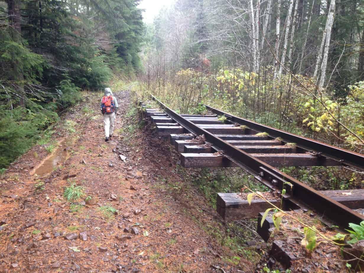 Oregon Coast Range Hikes: Upper Salmonberry River