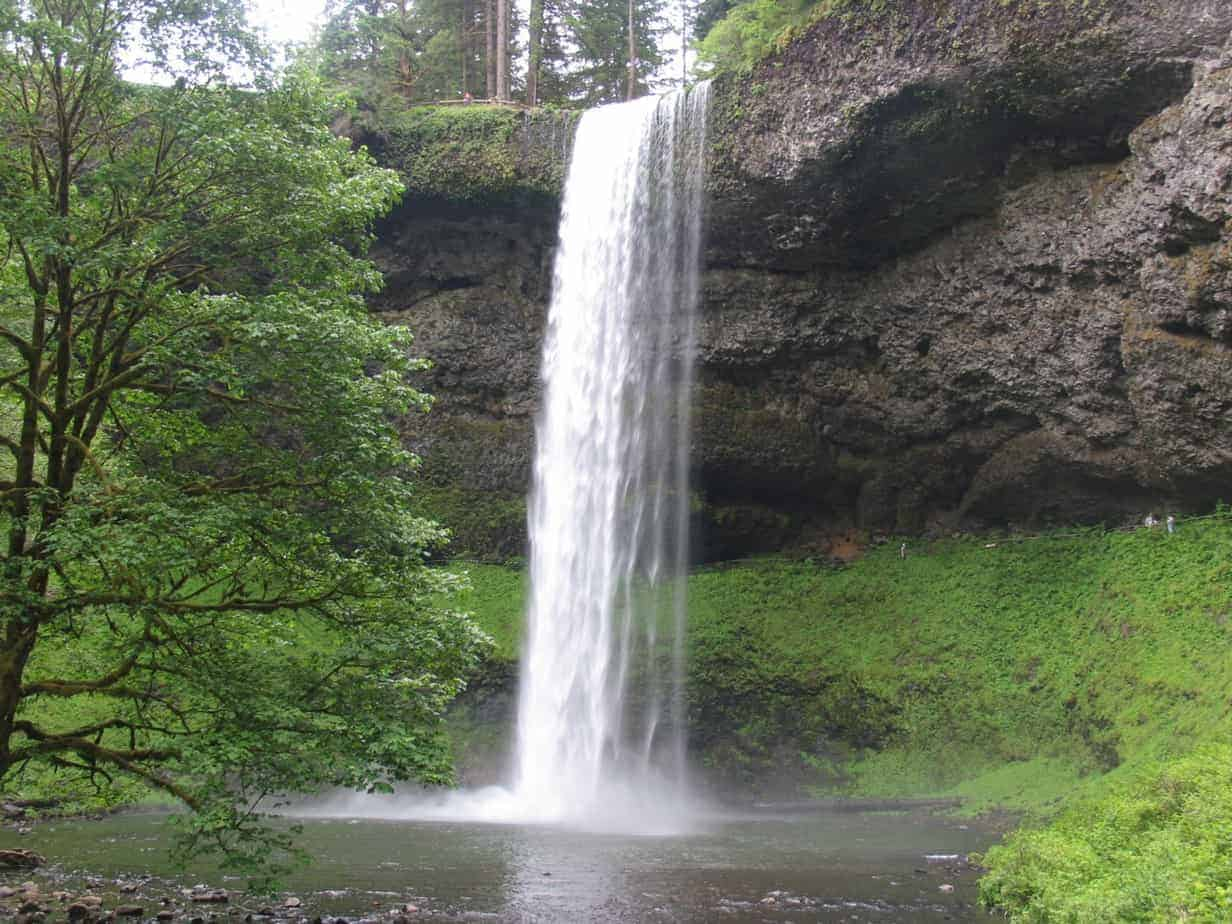 Silver Falls State Park is one of some 30 Oregon state parks offering a First Day Hike on January 1.