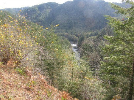 The Wilson River is one of the best winter hikes near Portland.