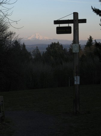 Classic Portland Hike: Marquam Trail to Council Crest
