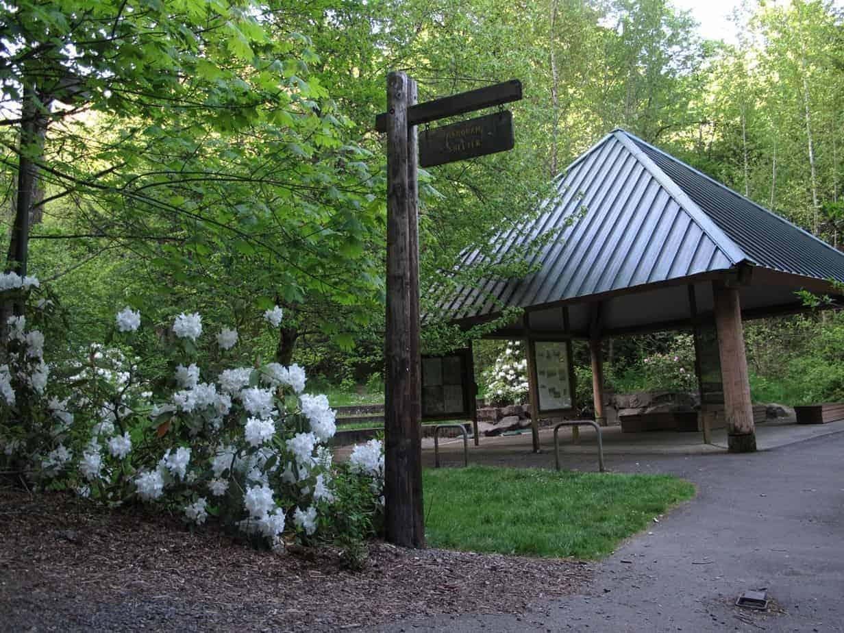 Classic Portland Hike: Marquam Trail to Council Crest