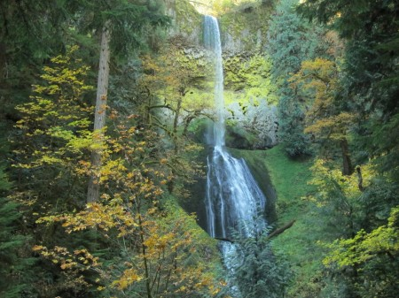 pup creek falls on the clackamas river trail in oregon.