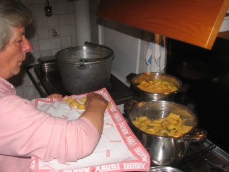 tortelli6b