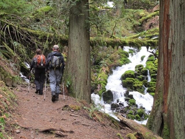 Hiking up Wahkeena Creek in the Columbia River Gorge.