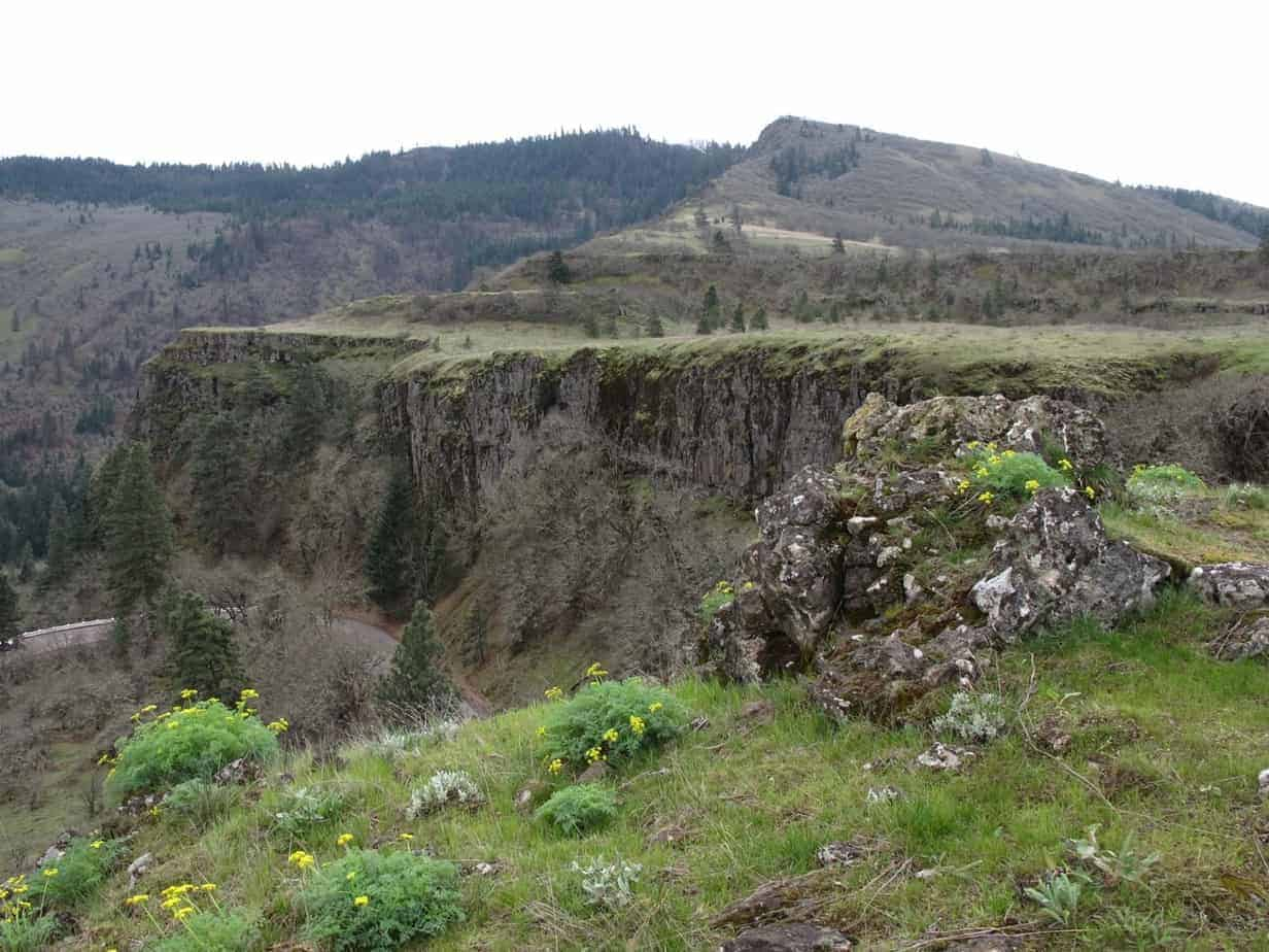 Best Wildflower Hikes in the Columbia River Gorge   Author ...