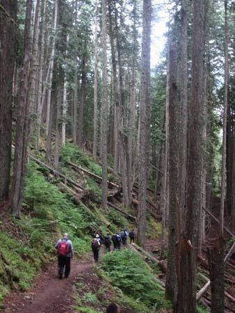Descending to the Sandy River.