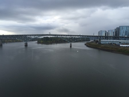 Ross Island and its namesake bridge, from Tillicum Crossing.