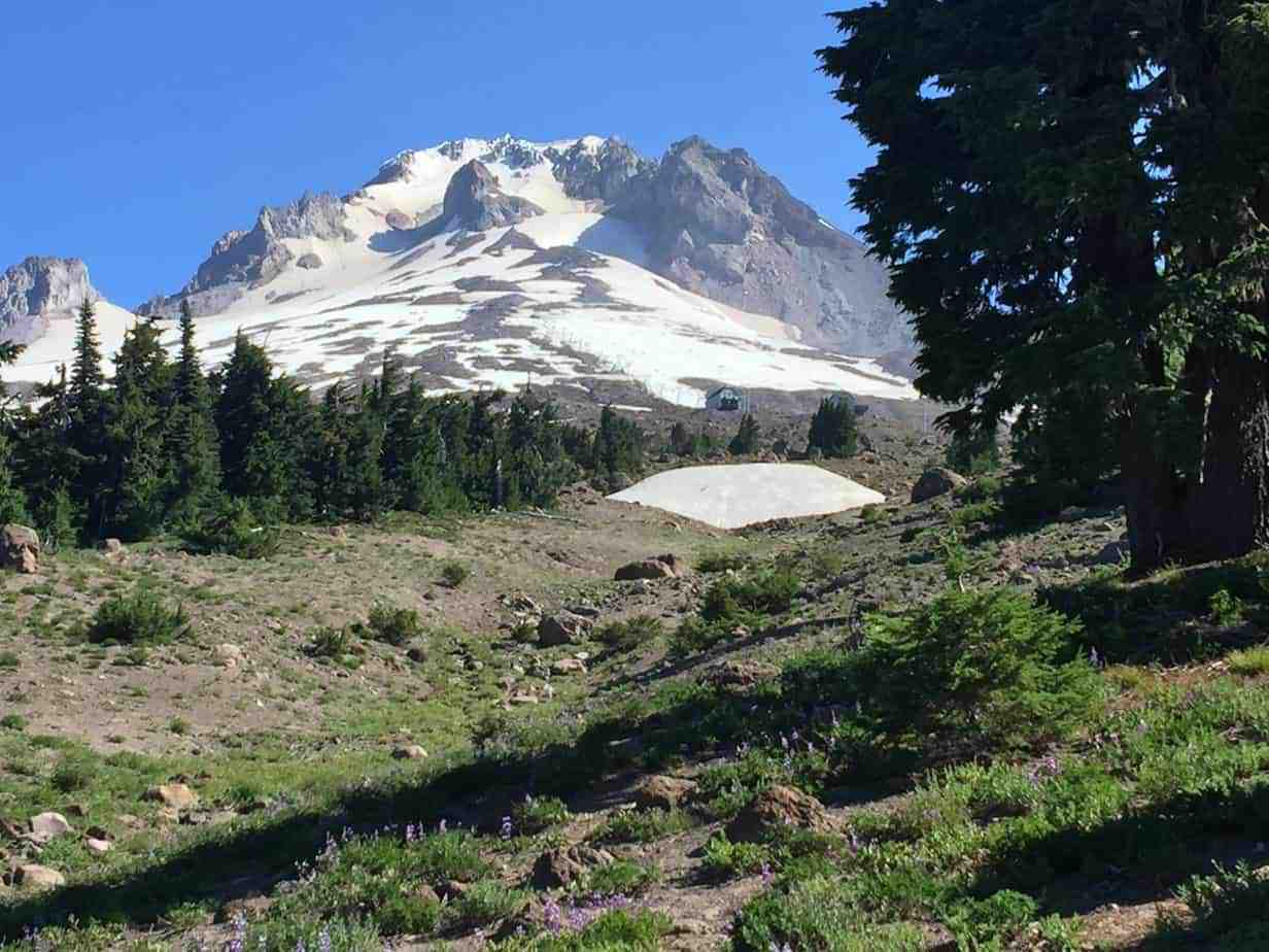Mount Hood from the trail, just a little west of Timberline Lodge.
