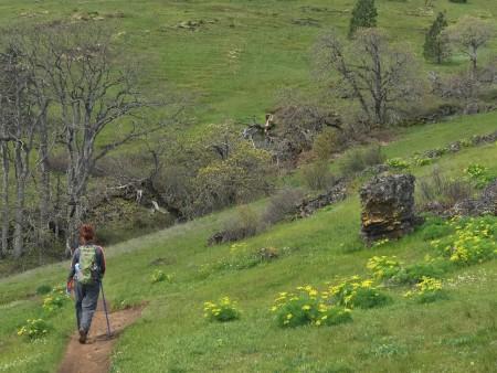 Classic Labyrinth hiking scenery