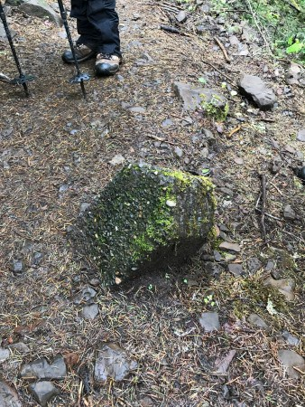 About 2.5 miles up Eagle Creek Trail, this is the tip of a former concrete trail marker! Who knows where the rest are ...