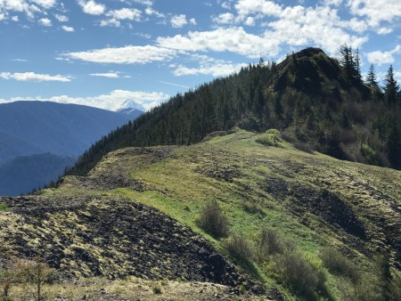 Ridge north of Hamilton's summit.