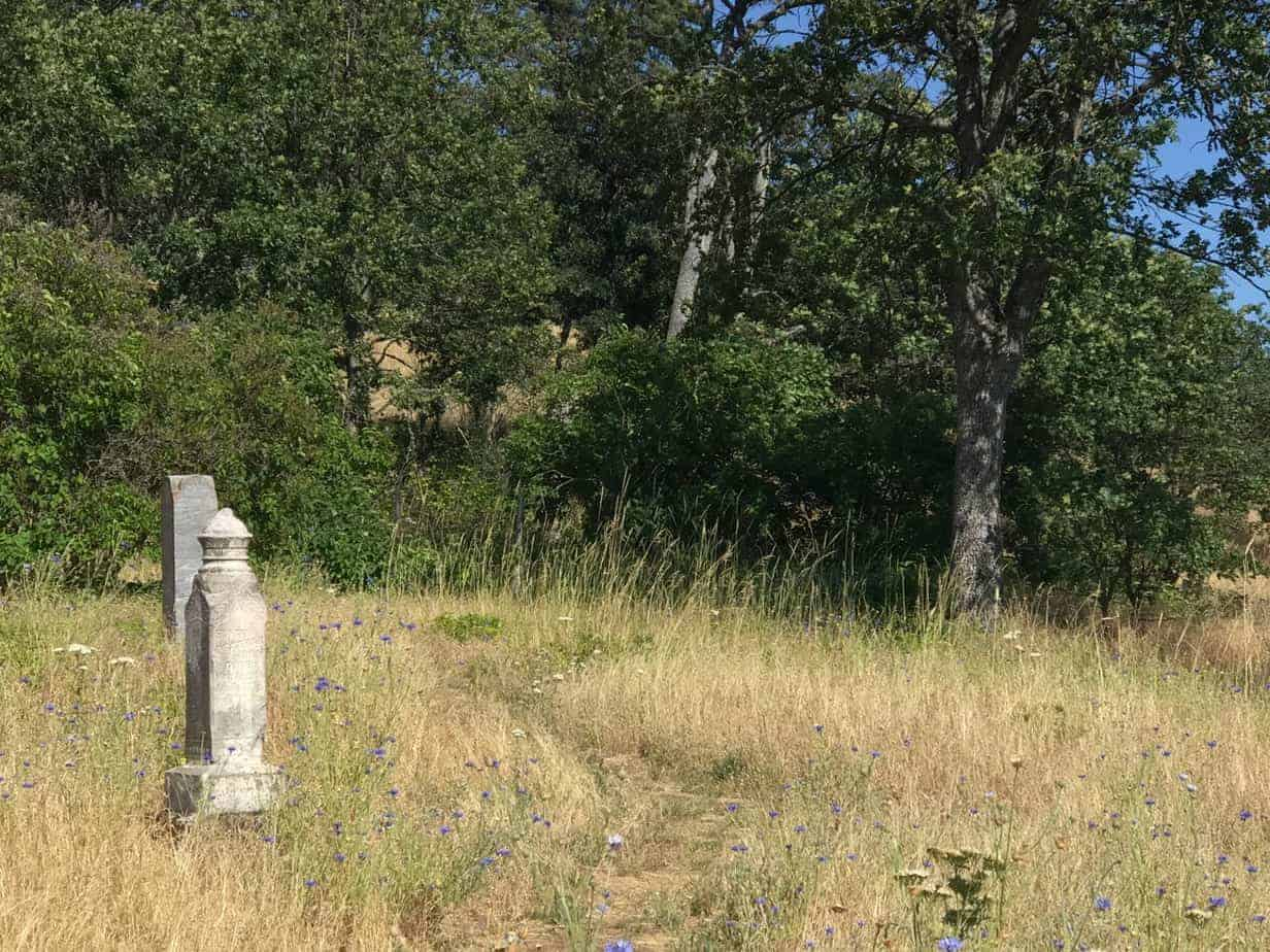 Mosier plateau a newish trail in the columbia river gorge its great to see some new trails coming along in the gorge and its great to see that we are connecting so many trails to towns out there see how it publicscrutiny Image collections