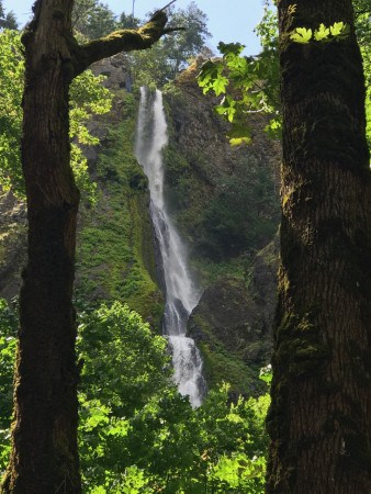 Starvation Falls, just a minute's walk from I-84.