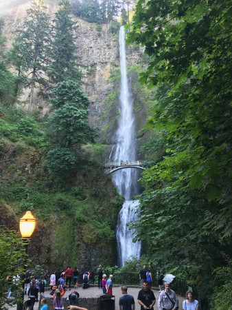 Even at 8 on a weekday morning, you don't get much peace of mind at Multnomah Falls.