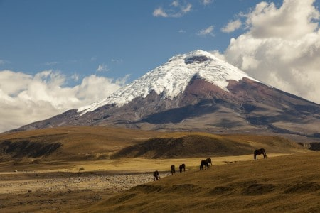 We will hike to nearly 17,000 feet on the slopes of Cotopaxi.