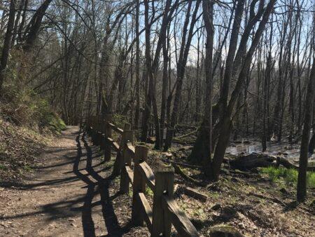 oaks bottom hike portland without a car