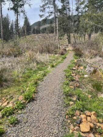 hike manzanita to neahkahnie oregon coast trail