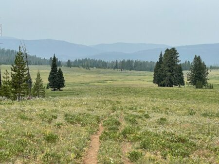 A trail leads through sagebrush with smoky mountains in the distance.